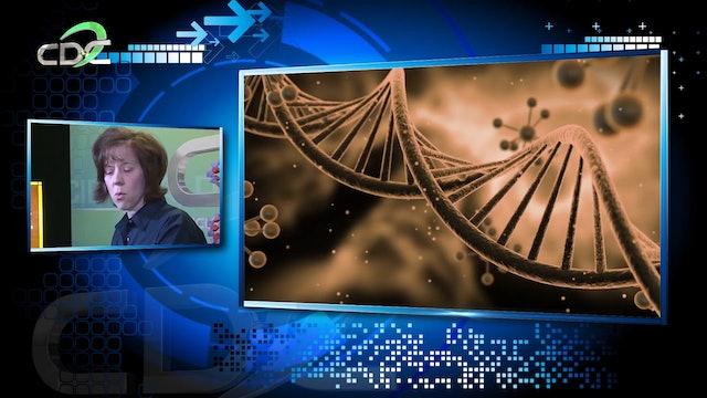Genética y la Biblia Episodio 2: La evolución o la creación Pt 2