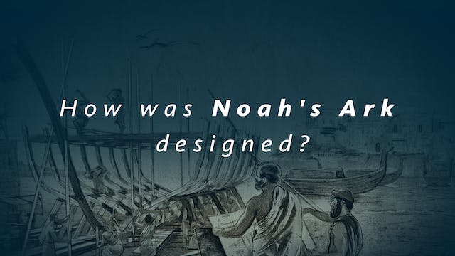 How was Noah's Ark designed?
