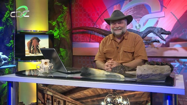 Aventuras con Buddy Davis: Episodio 9