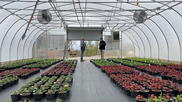 Inside Look at Hydroponics and Greenhouses