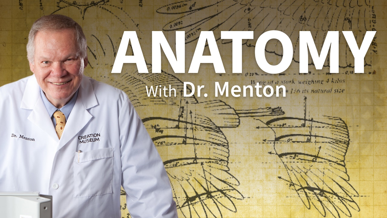 Anatomy with Dr. Menton