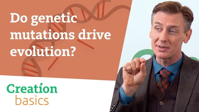 Do genetic mutations drive evolution?