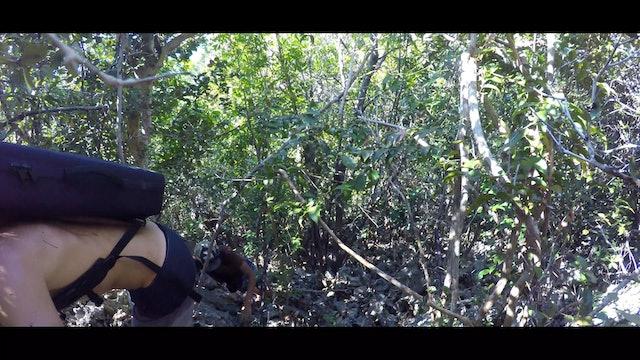 Equator Island Adventure Part 3