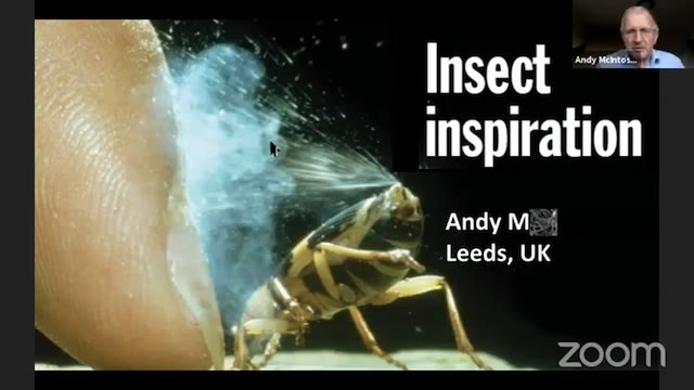 The Extraordinary Design of the Bombardier Beetle (Prof. Andy McIntosh)