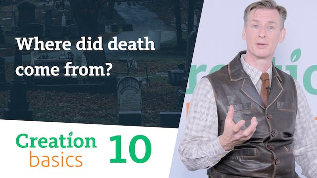 Where did death come from?