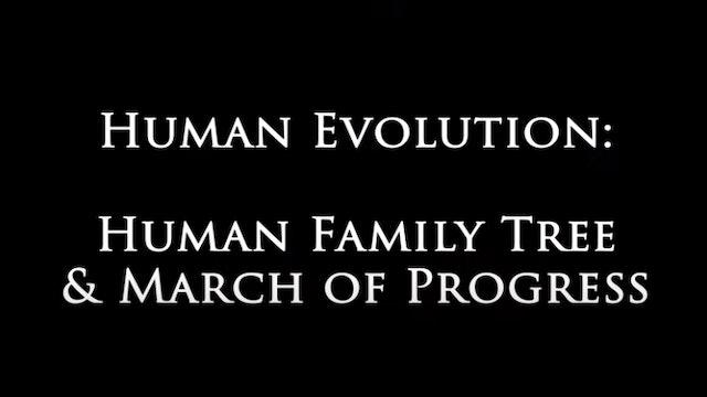 Genesis Impact Clip - Human Family Tree March of Progress