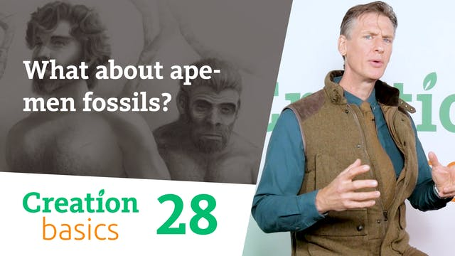 What about ape-men fossils?