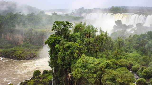 6/22 Flood Solves Antarctica Rainforest Mystery