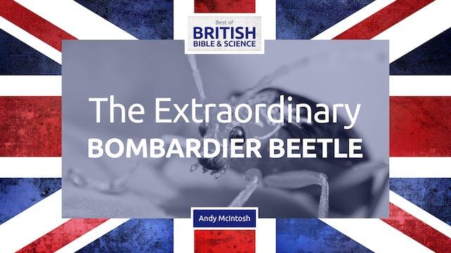 The Extraordinary Bombardier Beetle