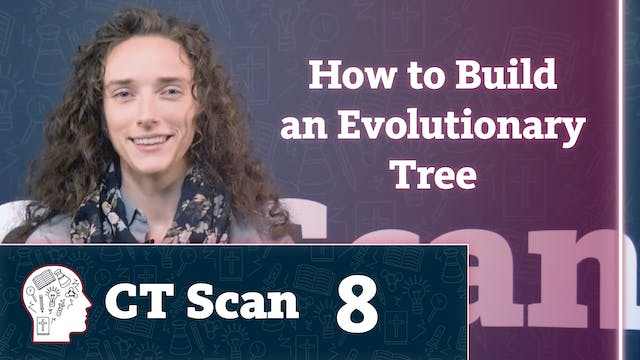 How to Build an Evolutionary Tree