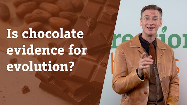 Is chocolate evidence for evolution?