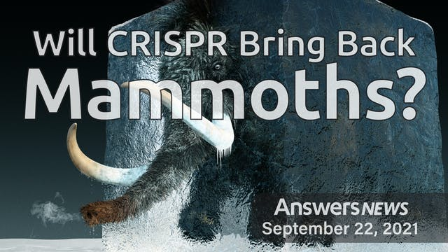 9/22 Will CRISPR Bring Back Mammoths?