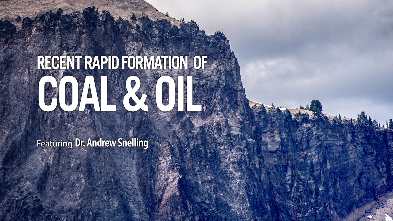 Recent Rapid Formation of Coal and Oil