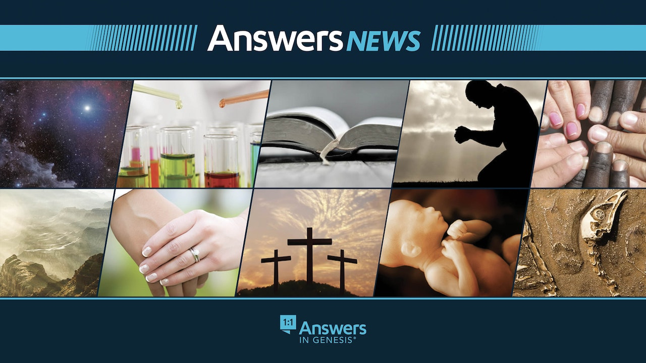 Answers News
