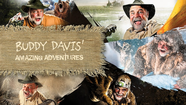 Buddy Davis' Amazing Adventures