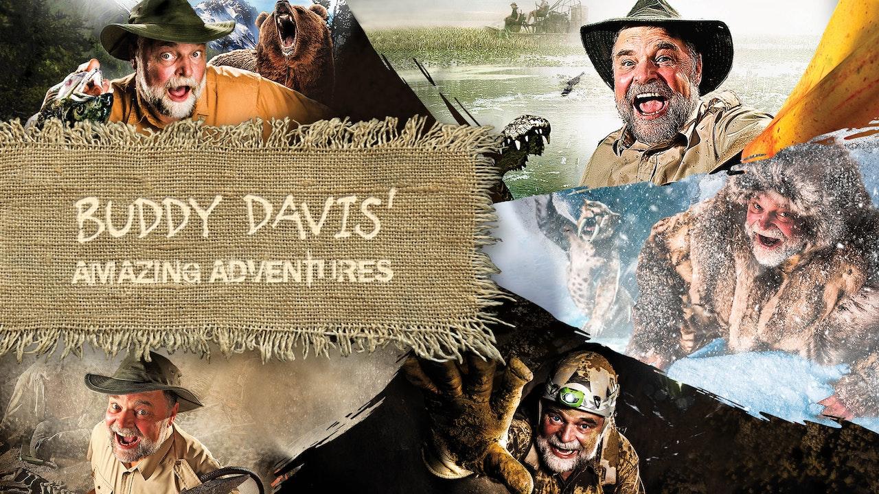 Buddy Davis' Amazing Adventures