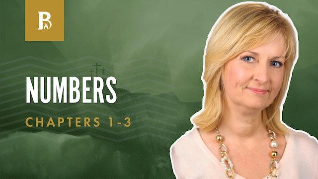 Establishing the Levites; Numbers 1-3