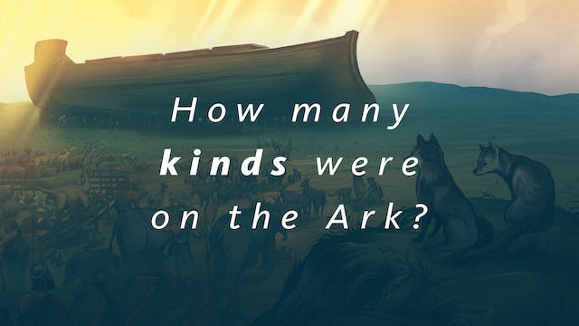 How many kinds were on the Ark?