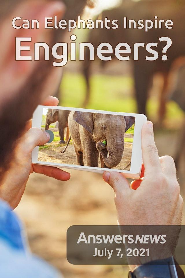 7/07 Can Elephants Inspire Engineers?