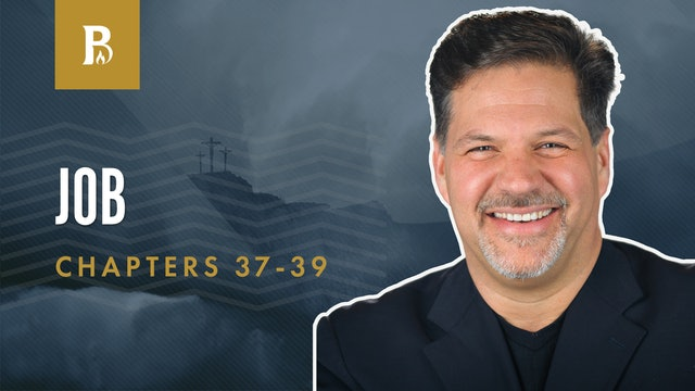 God Answers; Job 37-39