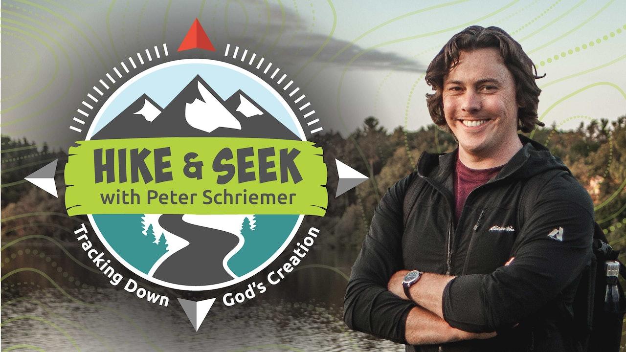 Hike & Seek