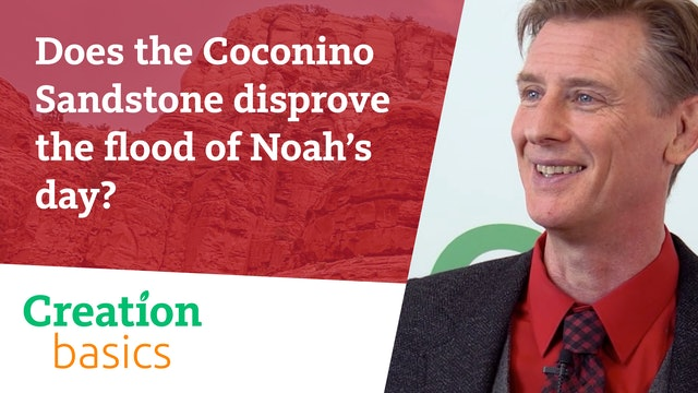 Does the Coconino Sandstone disprove the flood of Noah's day?
