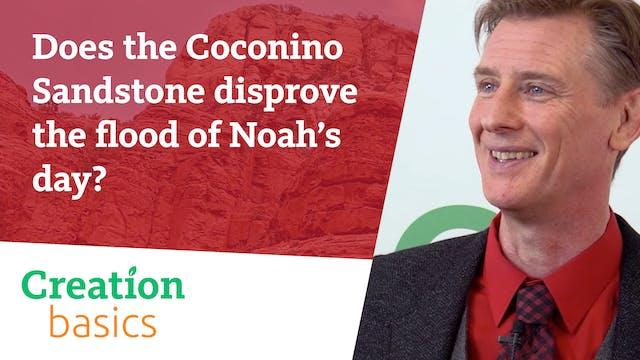 Does the Coconino Sandstone disprove ...