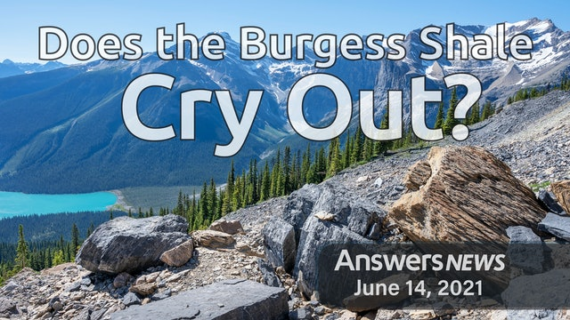 6/14 Does the Burgess Shale Cry Out?
