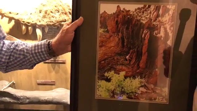 Andrew Snelling's Grand Canyon Research