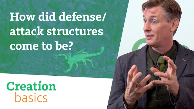 How did defense/attack structures come to be?