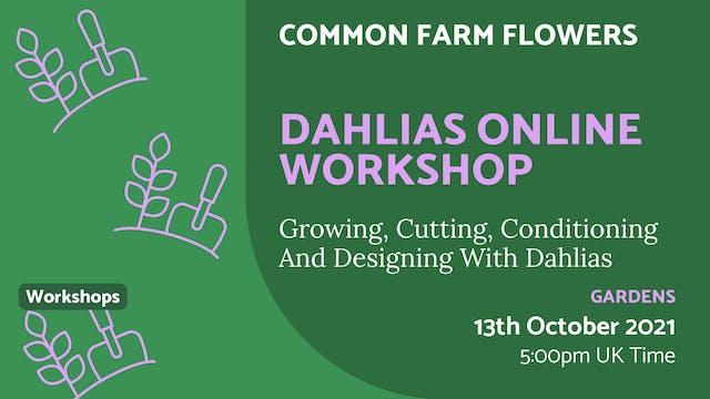 21.10.13 (Wed Oct 13th) | Dahlias Onl...