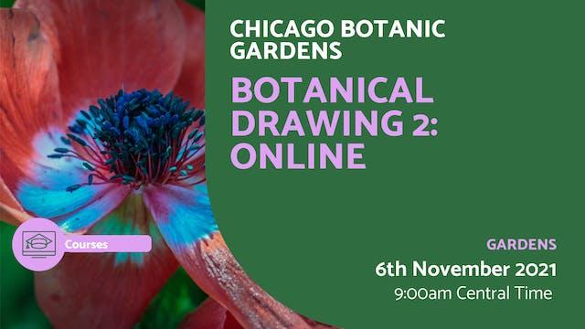 21.11.06 (Sat Nov 6th) | Botanical Dr...