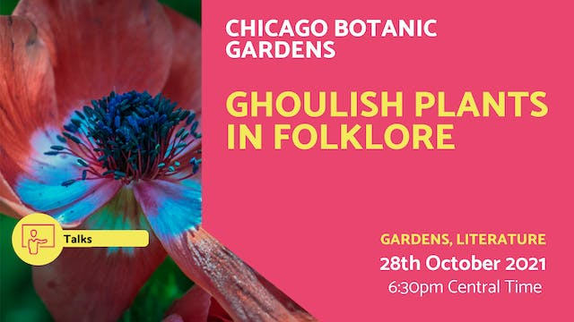 21.10.28 (Thu Oct 28th)   Ghoulish Pl...
