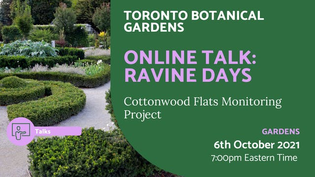 21.10.06 (Wed Oct 6th) | Online Talk:...