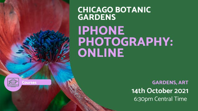 21.10.14 (Thu Oct 14th) | iPhone Phot...