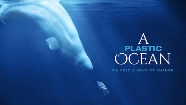 A PLASTIC OCEAN - 8 minute version