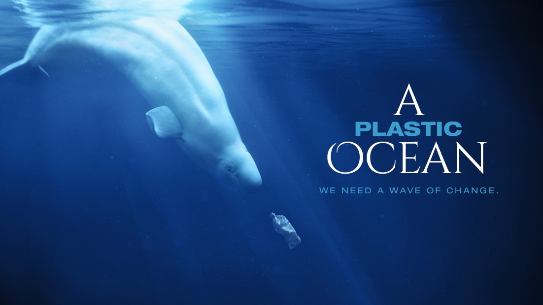 A PLASTIC OCEAN - Condensed, Subtitled Simplified Chinese
