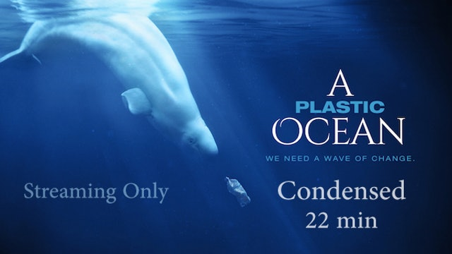 A Plastic Ocean - Condensed - Streaming Only