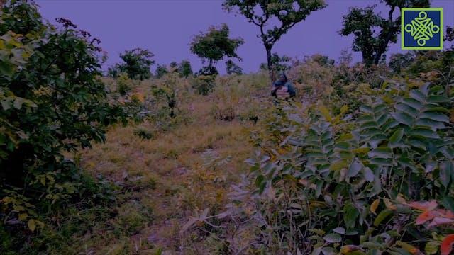 Kannywood Movie | Hindu