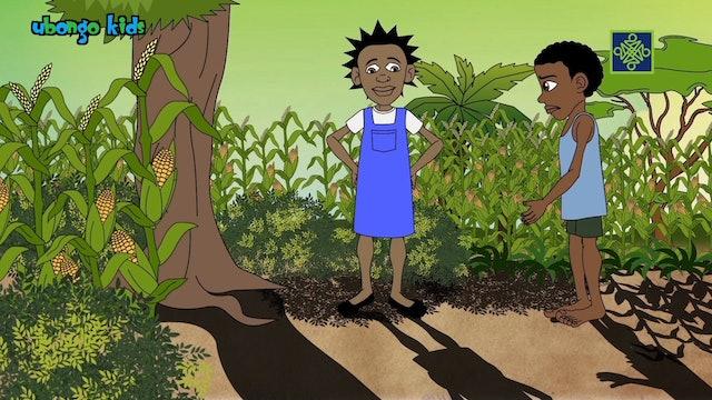 Ubongo Kids | Zango Na Biyu (2) | Kashi Na Biyar (5)