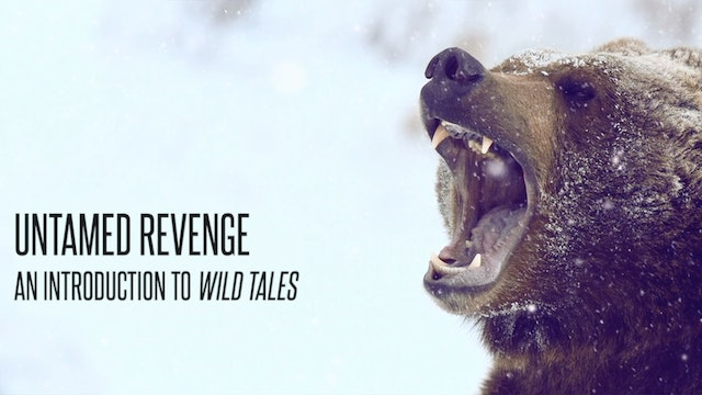 Untamed Revenge: An Introduction to Wild Tales