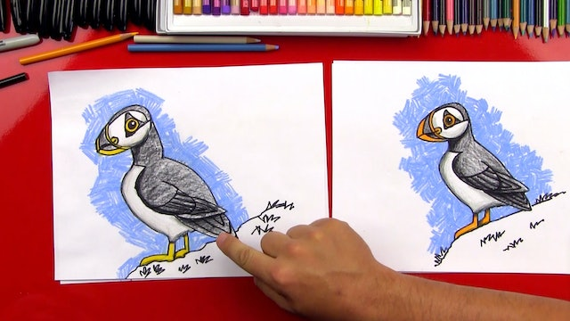 How To Draw A Realistic Puffin