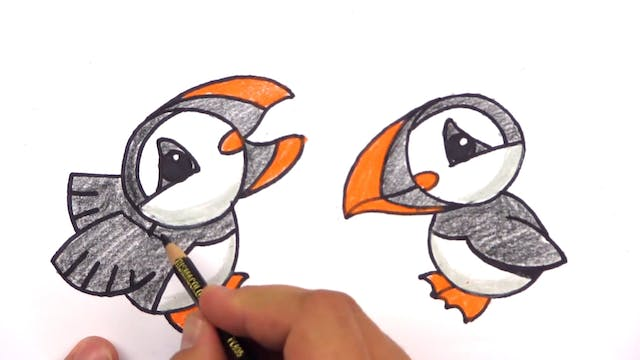 Member - How To Draw A Cartoon Puffin