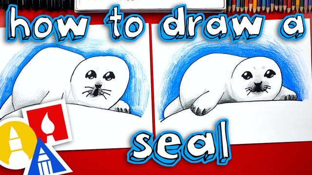 How To A Baby Seal