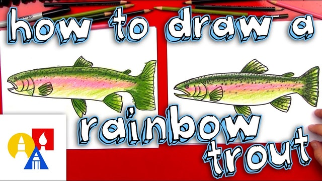 How To Draw A Rainbow Trout (Fish)