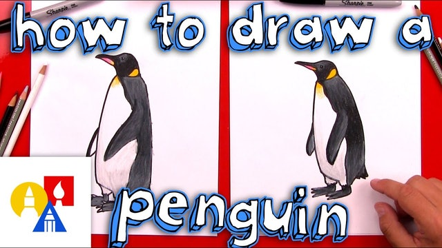 How To Draw A Realistic Emperor Penguin