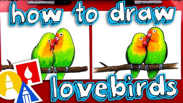 How To Draw Lovebirds - members