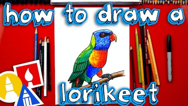 How To Draw A Realistic Rainbow Lorikeet