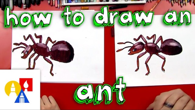 How To Draw A Realistic Ant