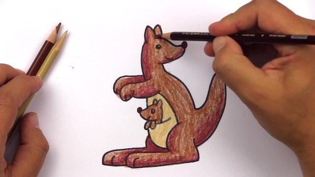 Member - How To Draw A Cartoon Kangaroo